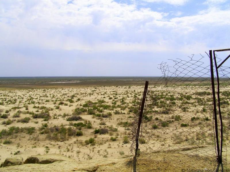 Desert near Nukus, Uzbekistan