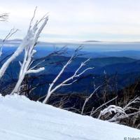 Skiing at Mount Buller, Australia