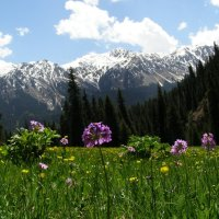 Everything you need to know about independent travel in Kyrgyzstan