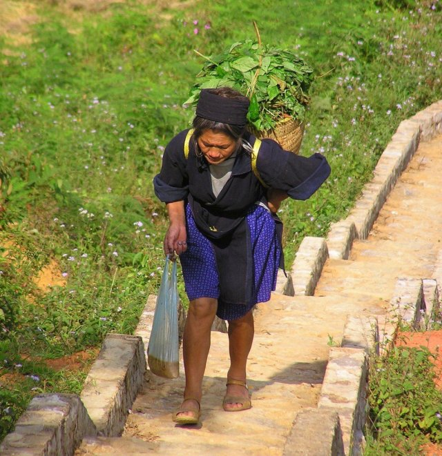 Black Hmong-carter-Vietnams-hill-country