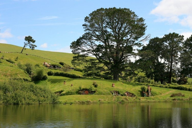 The Party Field, Hobbiton, New Zealand