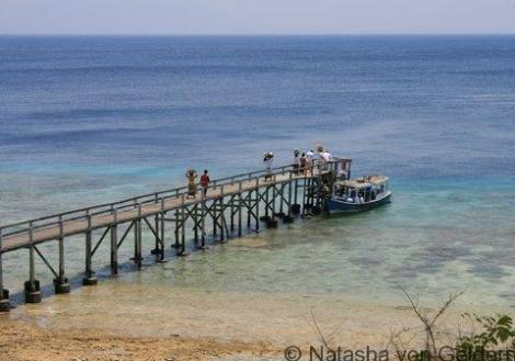 The jetty on Menjangan Island, West Bali National Park