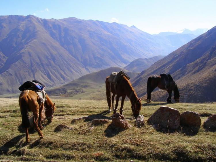 horse-trekking-in-kyrgyzstan