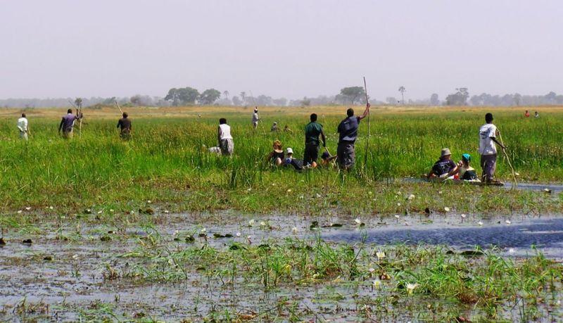 Mokoros in the Okavango Delta, Botswana