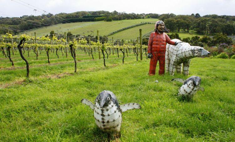 Mornington Peninsula wine region, Australia