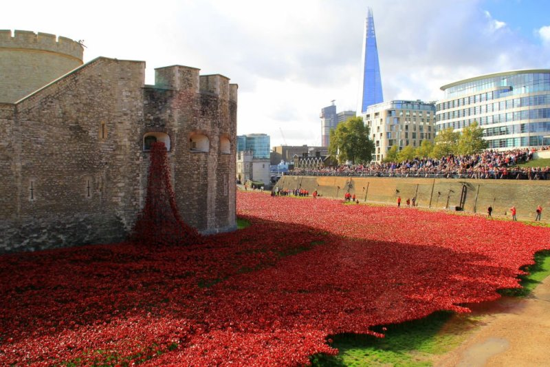 Blood swept lands & seas of red, Tower of London poppies-002