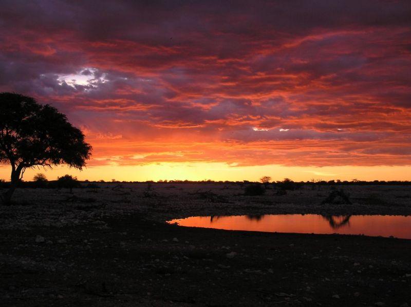 Etosha waterhole sunset, Namibia