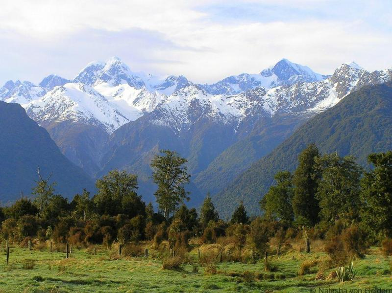 West Coast scenery near Lake Matheson, New Zealand