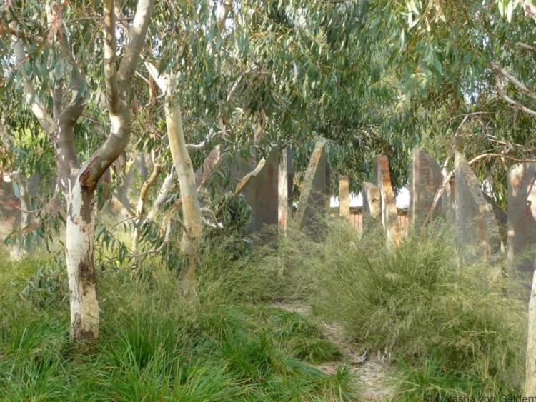 Ian Potter Children's Garden, Royal Melbourne Botanic Gardens