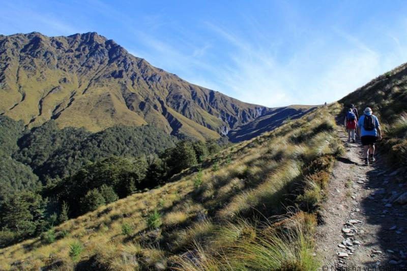 Ben Lomond Track Queenstown New Zealand Photo by Natasha von Geldern