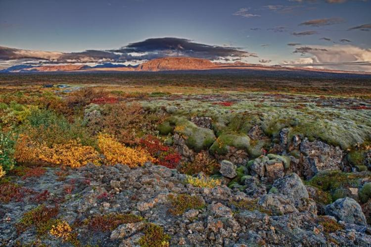 Iceland - thingvellir-haustlitir