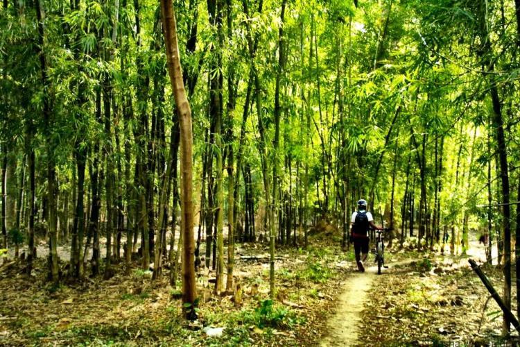 Inle Lake bike tour Myanmar with Grasshopper Adventures