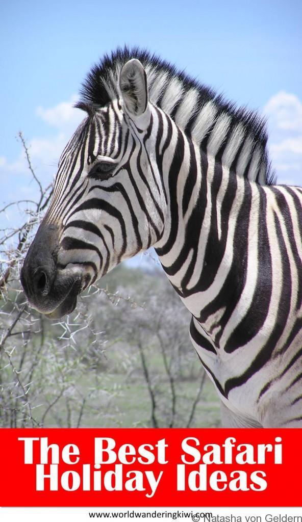 Best safari holiday ideas Africa