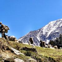 India: A 3-day trek from Dharamshala