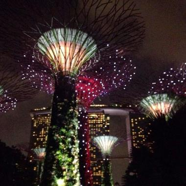 Gardens by the Bay at night Singapore