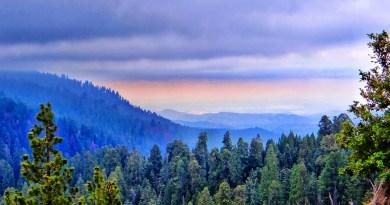 Sequoia - Redwood Mountain Overlook