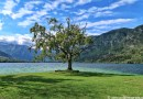 one day at Bohinj lake