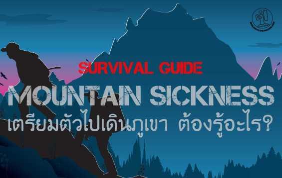 www.vectoropenstock.com