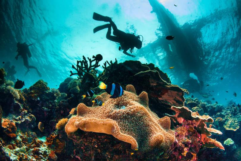Top-8-scuba-diving-destinations-in-the-Caribbean