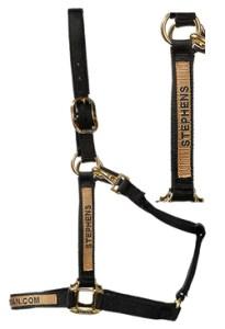 customized-nylon-halter-with-snap-1