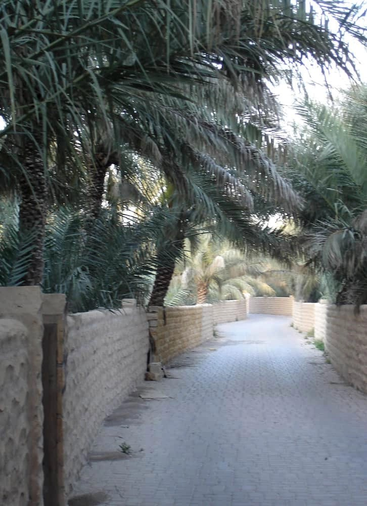 Oasis, Al Ain