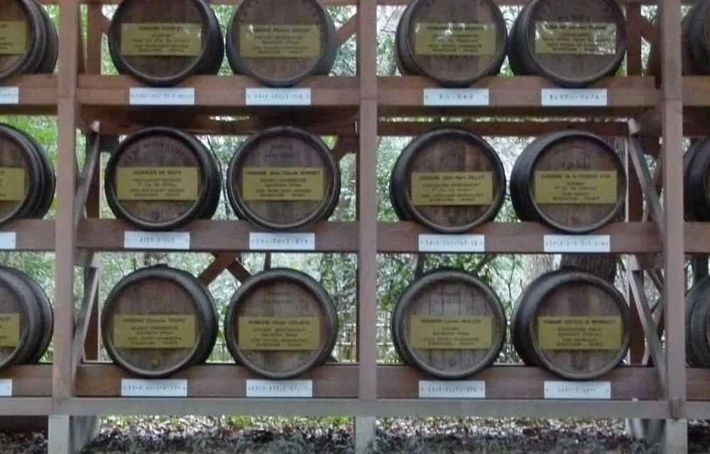 Barrels at the Meiji Shrine, Tokyo
