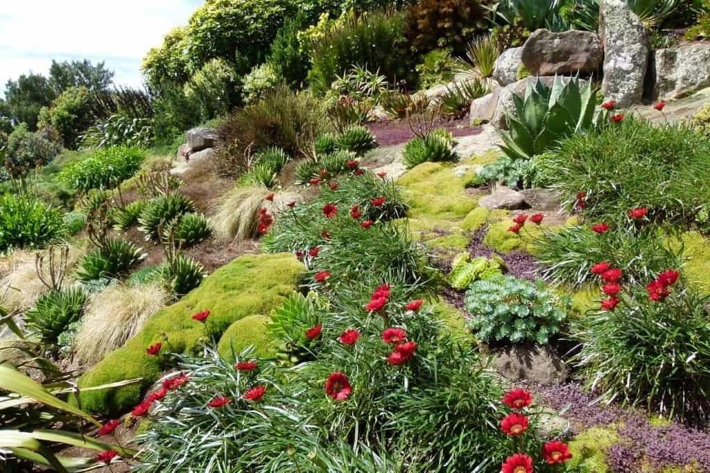 South Seas Garden