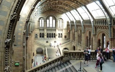 Admiring the Architecture of London's Natural History Museum
