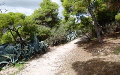 A Walk up Lycabettus Hill, the Highest Point in Athens