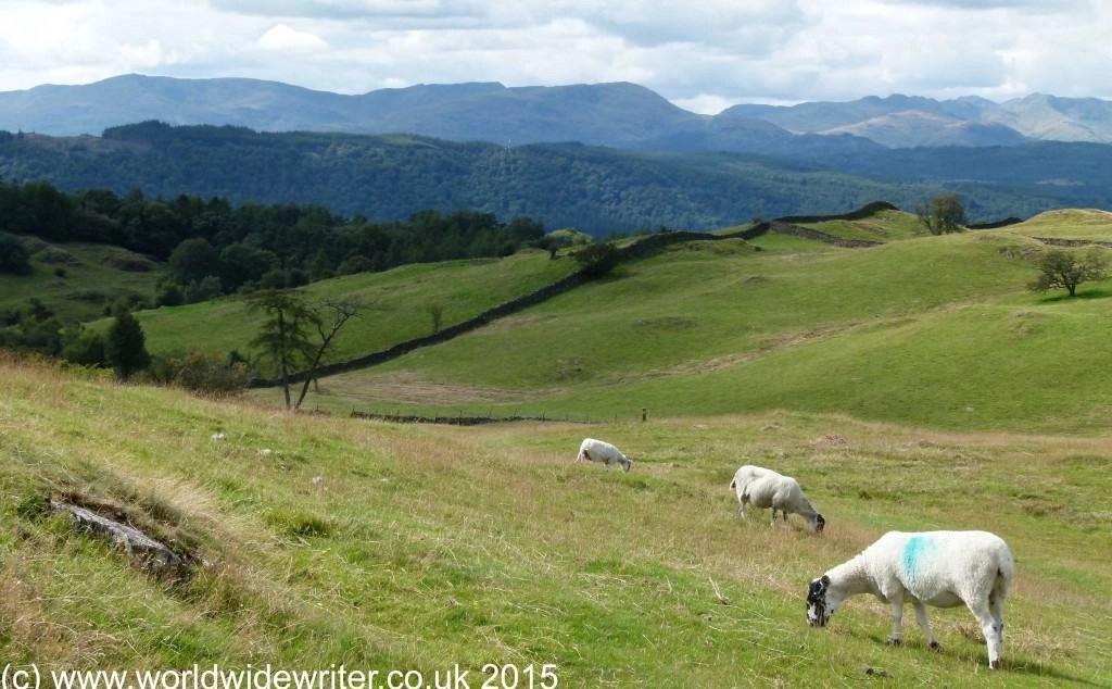 The Dales Way, England (www.worldwidewriter.co.uk)