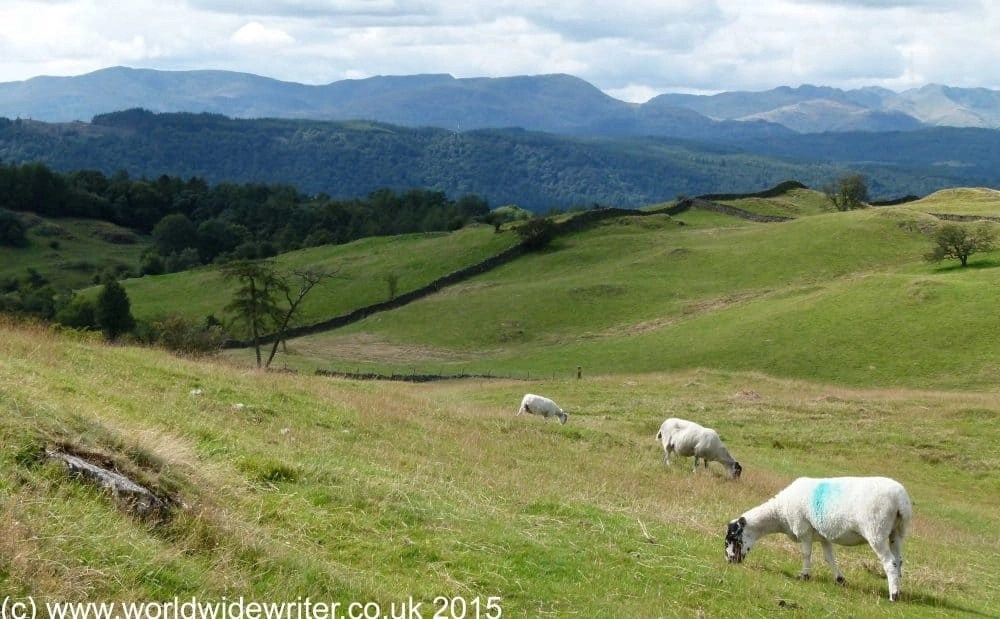 A Novice's Guide to Hiking England's Long Distance Paths
