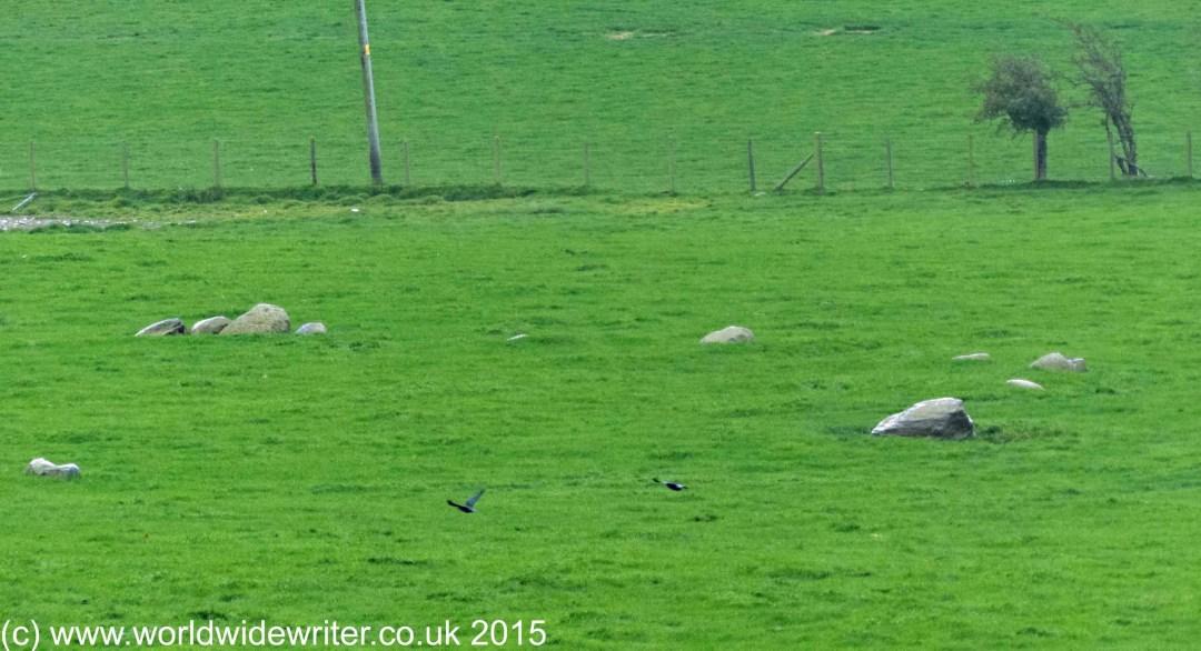 Elva Plain stone circle, Cumbria - www.worldwidewriter.co.uk