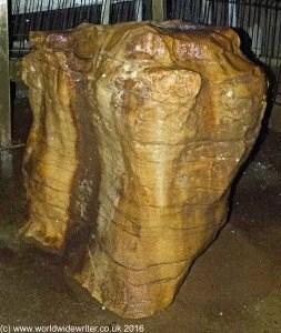 Stone in the Ruakuri Cave
