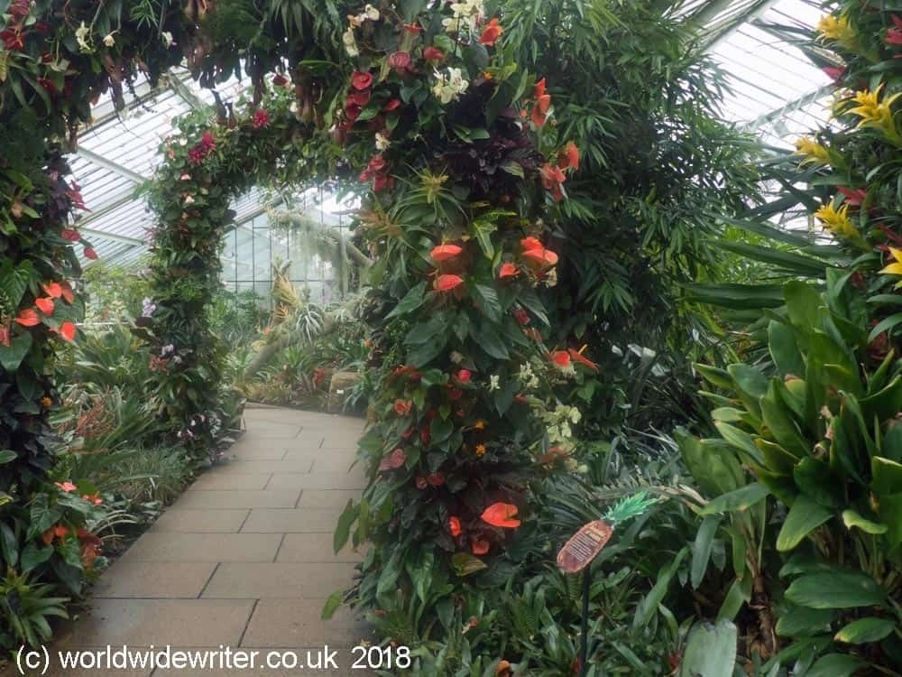 Princess of Wales Conservatory, Kew Gardens