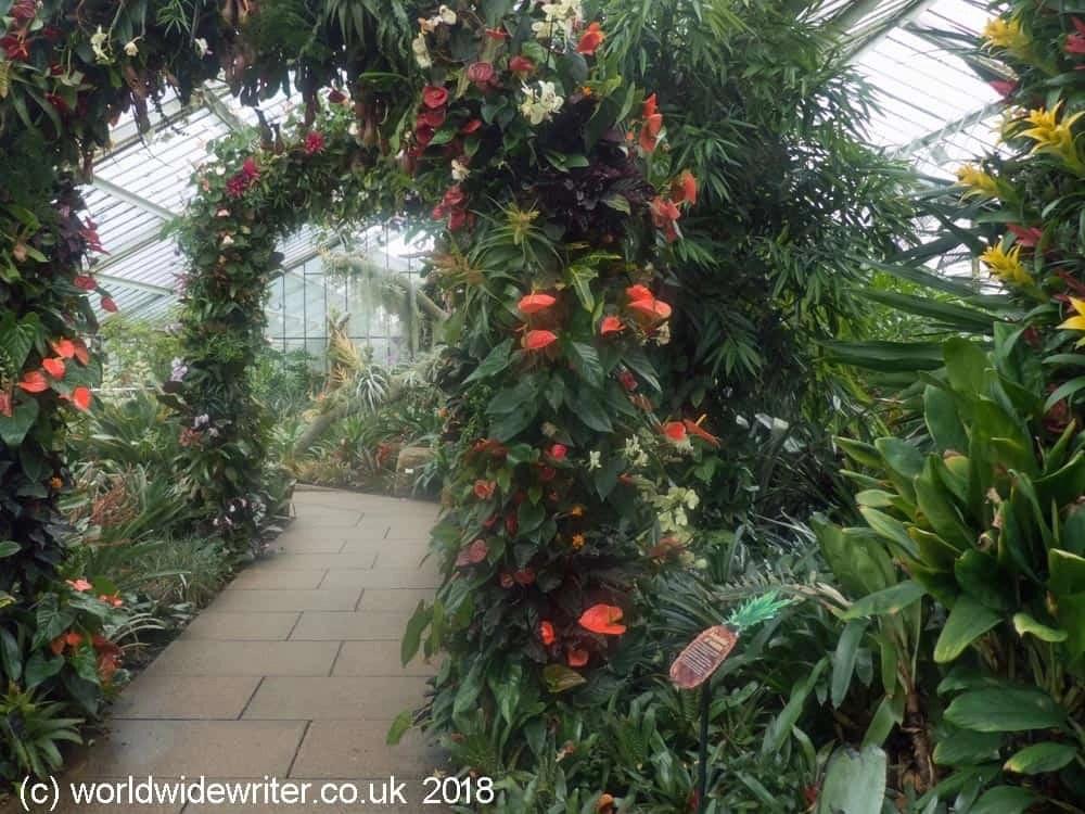 Princess of Wales Conservatory, Kew Gardens