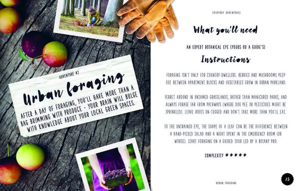 Urban Foraging, an everyday adventure from Lonely Planet