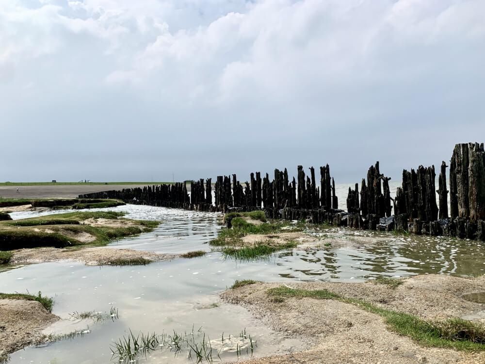 De mooiste kustlijn van Nederland: de kwelders van tweelingdorp Paesens-Moddergat.