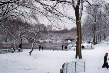 Central Park after snow | New York City | New York