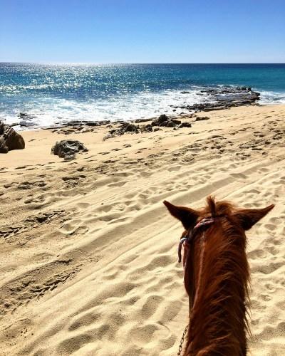 Horseback riding on the beach | El Encanto de la Laguna hotel | Things to do in San Jose del Cabo | Mexico