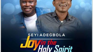 Photo of #FreshRelease: Joy in the Holy Spirit By Seyi Adegbola
