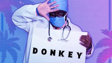 Photo of [Audio] Donkey By Dr Afrobuzz