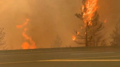 Photo of Wildfires Rage Across Western Canada And California