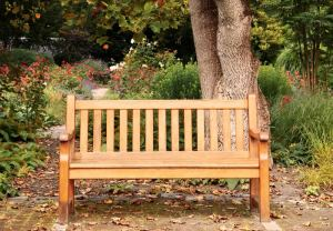 Sharing-Wishes-Park-Bench