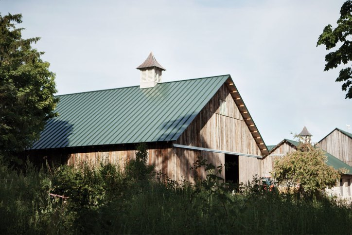 Idyll Farms