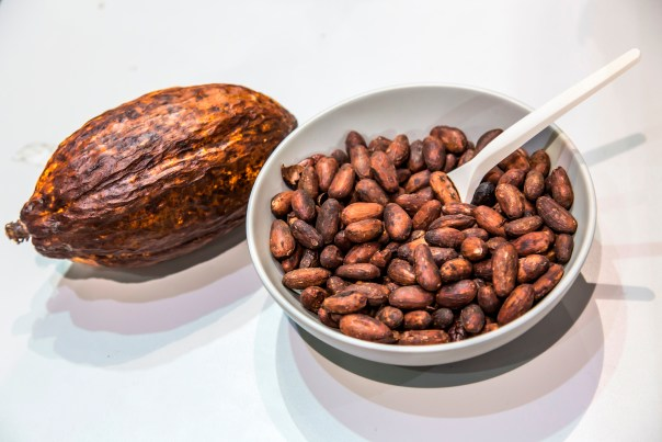 raw cacao beans are aphrodisiacs