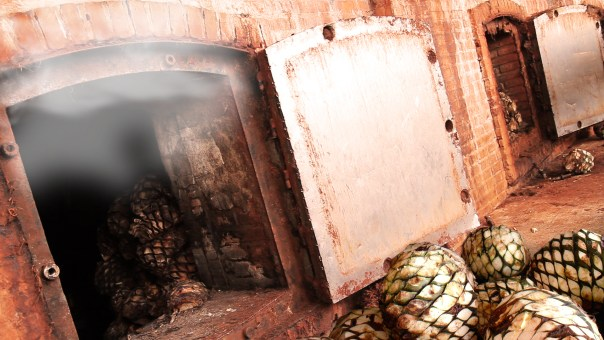 "The process of steaming was adopted as a ""modern"" way to remove impurities from the agave, as well as increase production by allowing for more agave to be steamed at once. Credit: Clase Azul"
