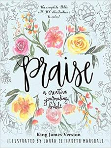Praise - A Creative Journaling Bible