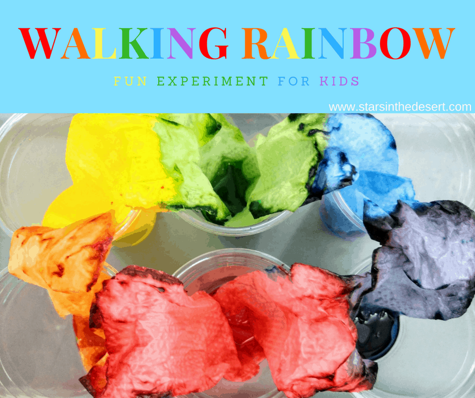 toddler science activities