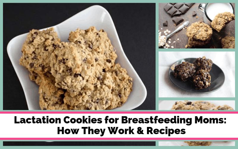 Lactation Cookies for Breastfeeding Moms How They Work and 10 Recipes