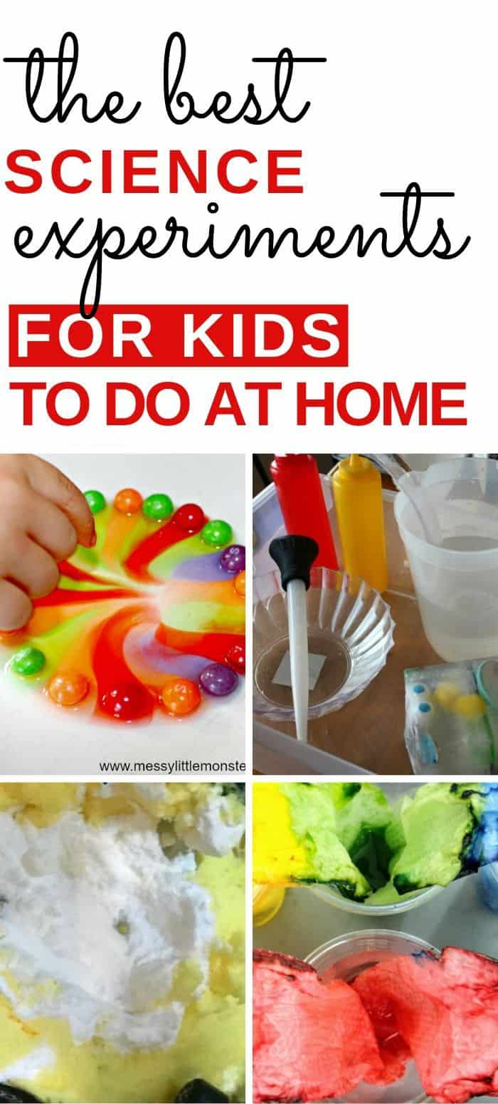 Homeschool science ideas